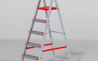 Лестница двухсекционная, профессиональная, универсальная