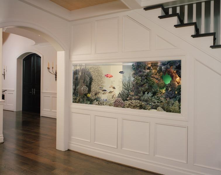 аквариум под лестницей